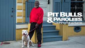 Pit Bulls & Parolees: Looking for a Home thumbnail