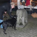 Jonge Hond centrum Emmen - 2012-04-01%2B051.JPG