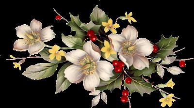 flores e frutinhas