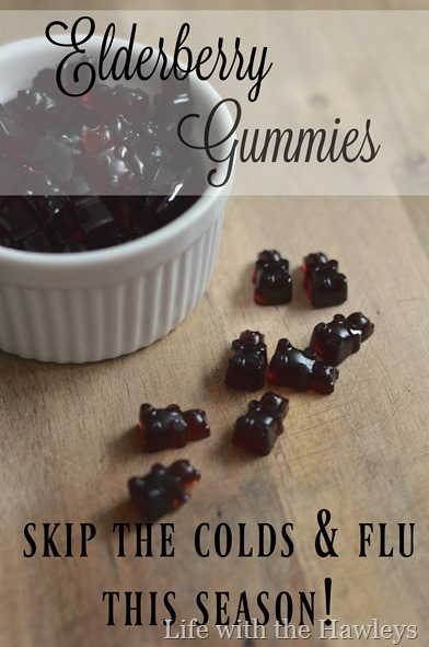 Elderberry Gummies- Life with the Hawleys