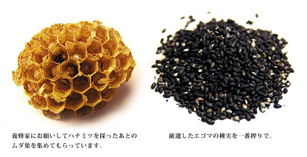 ハチの巣とエゴマのイメージ
