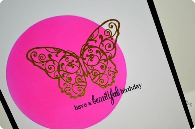 Beautiful Birthday Butterfly Closeup
