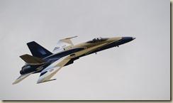 CF-18 Paint Scheme