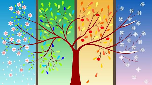 Bốn mùa của cuộc sống