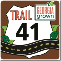 Trail 41 logo JPG