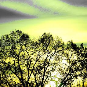 Greenleaf by Keysha Wallace-Patton - Digital Art Things