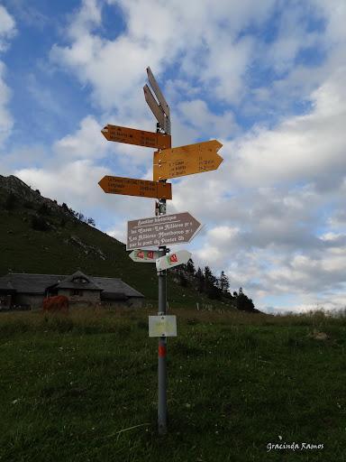 passeando - Passeando pela Suíça - 2012 - Página 9 DSC02323