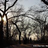 01-05-13 Arbor Hills Nature Preserve - IMGP3977.JPG