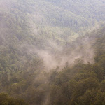 20180629_Carpathians_073.jpg