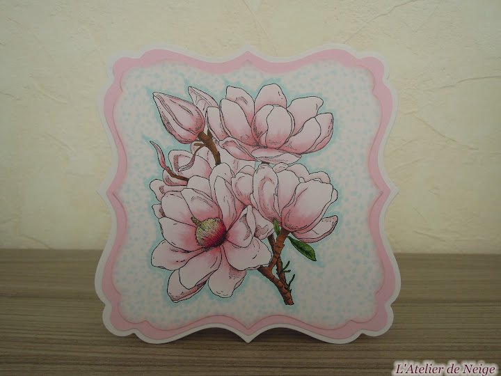 040 - Magnolia
