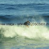 _DSC5831.thumb.jpg