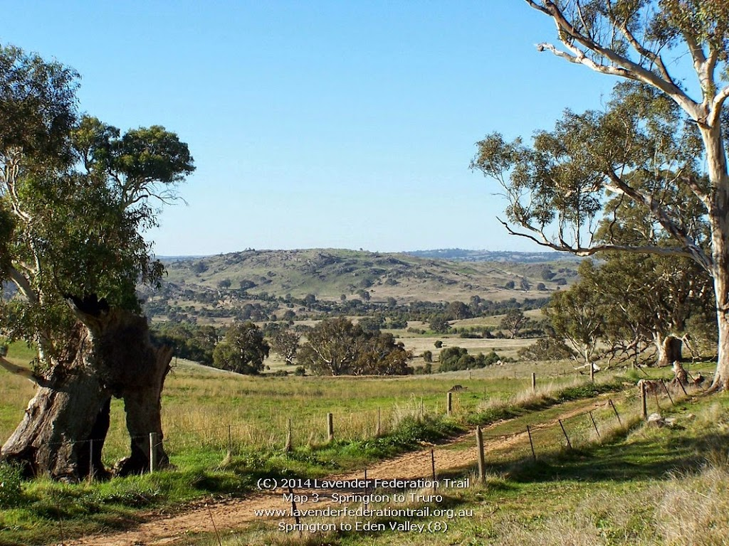 Springton to Eden Valley (8)