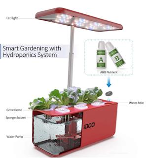 Indoor plant starter kit, garden starter kit, garden kit, growing plants