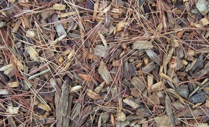 wood-mulch.JPG.662x0_q70_crop-scale
