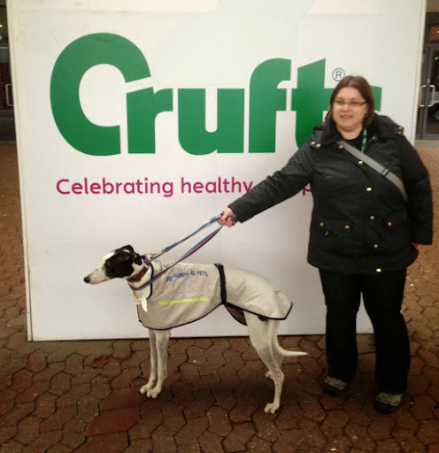 Trade Stands Crufts 2014 : Rolo hound adventures crufts is coming