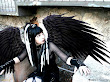 The Dark Gothic Angel Girl