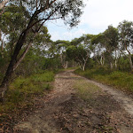 The top part of the Gibbergong track is mostly service trail (117064)