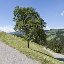 Hofer Alpl Tour 04.08.16-2927.jpg