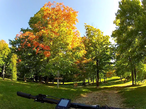 Early fall color at trailhead