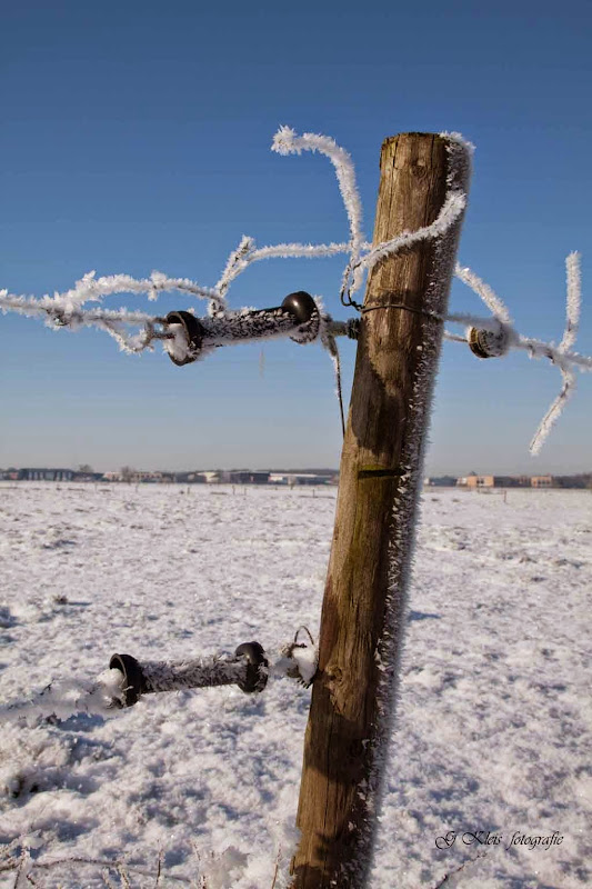 Winter - Winter-054.jpg