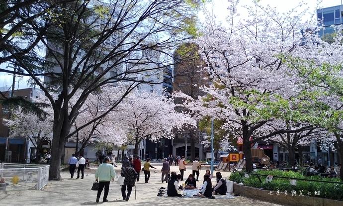 9 大阪賞櫻景點 堀江公園 味處和風亭