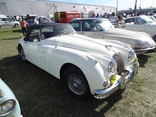 2016.09.24-014 Jaguar