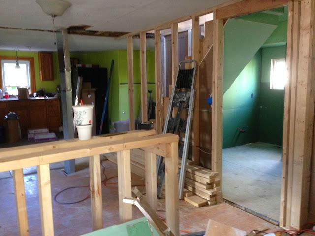 Renovation Project - IMG_0110.JPG
