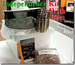 Independence Kit 2016a