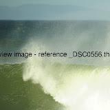 _DSC0556.thumb.jpg