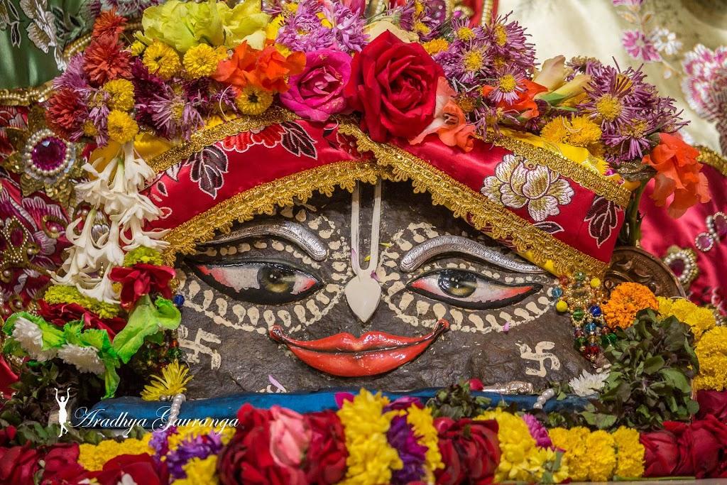 ISKCON Mayapur Deity Darshan 13 Jan 2017 (35)