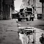 Cuba Street 2.jpg