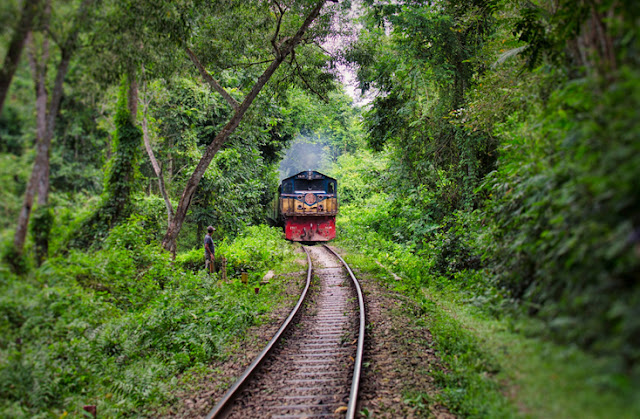 Rail track inside Lawachara National Park. ©Photo Credit: Asif Yousuf