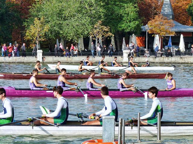 17 y 18/10/2015 - LXVIII Cto. España de Yolas (Madrid) - P1120750_2.jpg