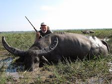 water-buffalo-hunting-safaris-5.jpg