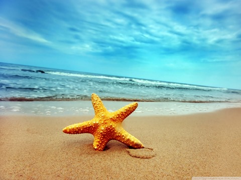 9-starfish-sea-beach-sand-wallpaper.1440