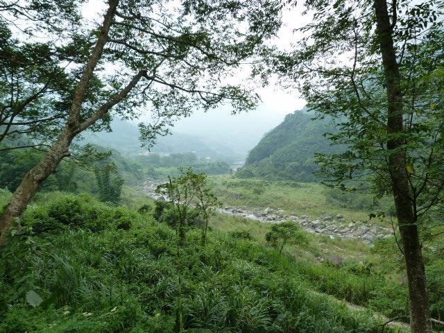 TAIWAN.Dans la région de Miaoli - P1080482.JPG