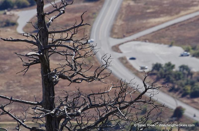 11-09-13 Wichita Mountains Wildlife Refuge - IMGP0358.JPG