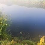 20140719_Fishing_Lysyn_028.jpg