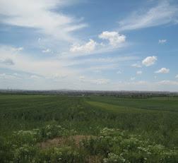 Orda bir kent var uzakta Diyarbakır.jpg