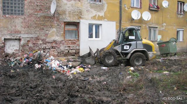 Curăţenia de toamnă 2009 - Picture%2B014.jpg