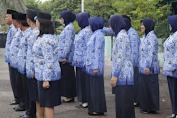 Mulai 1 November, Peserta Tak Lulus Seleksi CPNS 2019 Bisa Lakukan Sanggahan