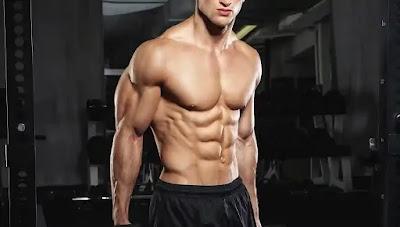 أهمية عضلات البطن