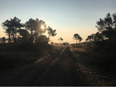 Santjago ceļš. 25. diena. Rīts.