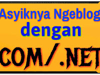Keunggulan Menggunakan Top Level Domain.net/.com