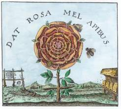 Engraving From Robert Fludd Summum Bonum Frankfurt 1629, Alchemical And Hermetic Emblems 1