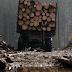 На Тячівщині зупинили авто з діловим лісом без чіпів та документів
