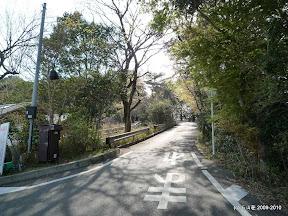 ご覧の急な坂を上りきった先に10台ほどの駐車場と横山の展望台が有ります。