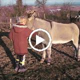Vidéo Phan