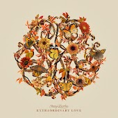 Extraordinary Love (Fall Version)