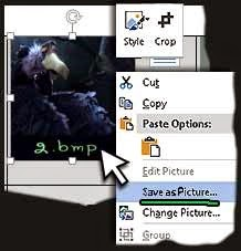 MS Word  save as picture